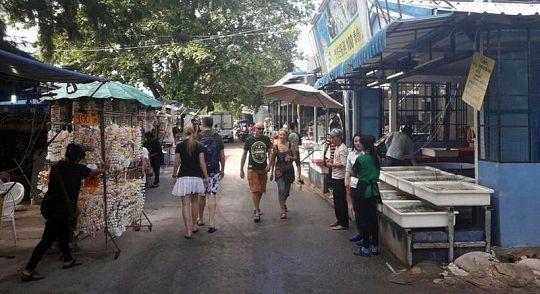Власти проверят законность ресторанов у цыганской деревни в Раваи