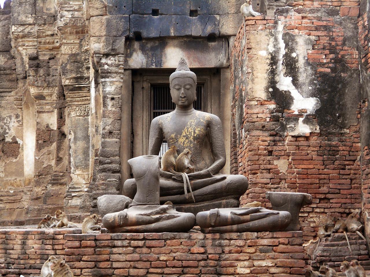 Обезьяньи забавы: что нужно знать туристам, отправляющимся в Таиланд
