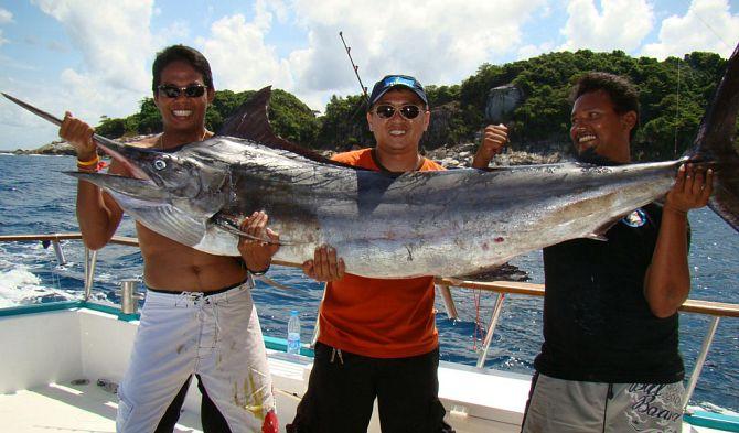 Эти удивительные тайские рыбы