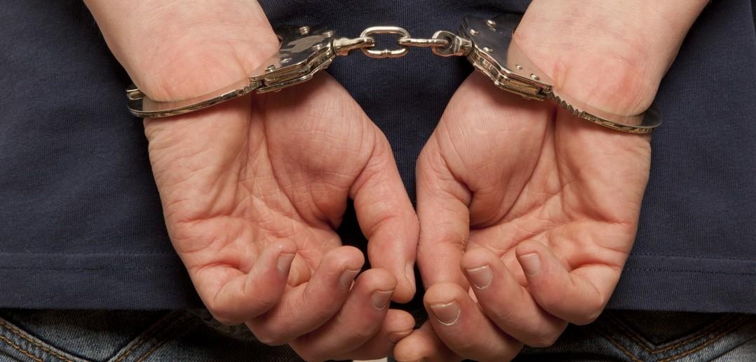 Таиланд выдал России мужчину, укравшего почти 6 млн рублей со счета омской компании