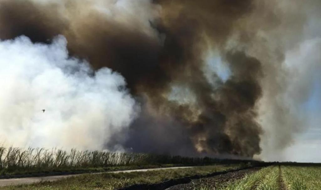Тайцы-фермеры погружают в смог всю страну