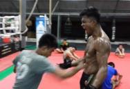Thai training