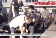 Пьяный турист из России укусил полицейского за ногу