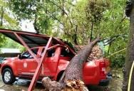 Мощный шторм обрушился на северо-восточную провинцию Сакон-Накхон (Sakon Nakhon), причинивший значительный ущерб жителям провинции