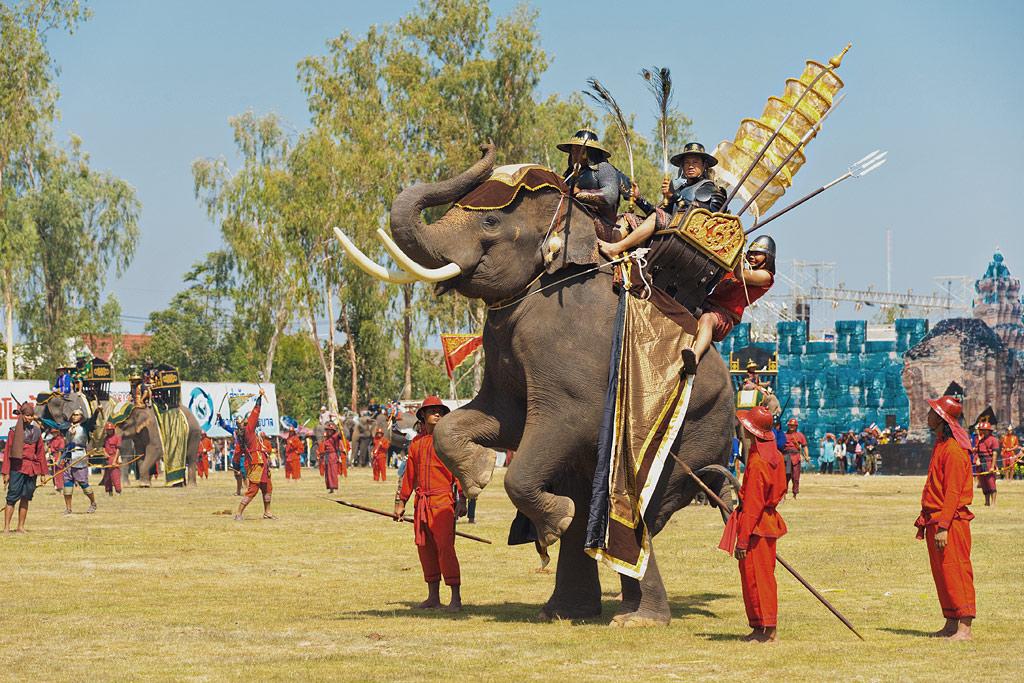 Похищенный на Сурине слон найден на Пхукете