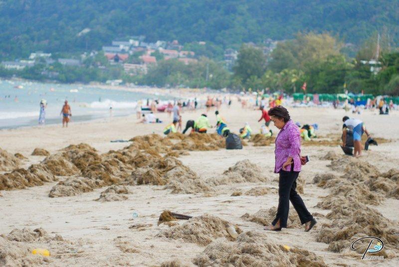 На пляже в Патонге продолжается уборка вынесенных на берег морских водорослей