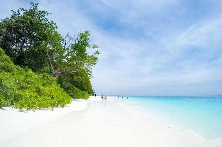 Стало известно, когда откроют остров Та Чай в Таиланде для туристов