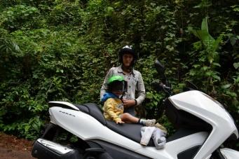Путешествие по провинциям Сураттани и Накхонситхаммарат