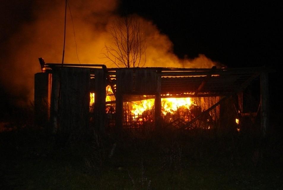 В Сапан-Хине сгорели 6 домов