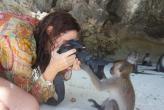 про обезьянку...