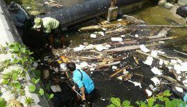 Муниципалитет Карона оперативно очистил от мусора канал у северной части пляжа после получения фотографий, на которых были запечатлены десятки плававших в воды пластиковых контейнеров из-под еды и другой мусор
