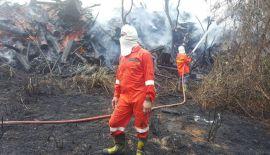 Три часа потребовалось пожарным из Раваи, чтобы ликвидировать возгорание растительности и мусора в районе футбольного поля у мыса Промтхеп