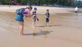 От купания на Банг-Тао лучше на время воздержаться. На пляж вынесло волнами крупных медуз