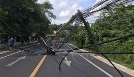 Часть тамбона Рассада временно осталась без электроснабжения после того, как водитель врезался в придорожную мачту электропередач и спровоцировал падение в общей сложности 10 столбов
