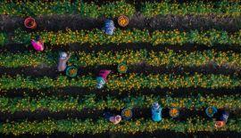 Дух захватывает: ТОП-20 лучших фотографий 2017 года, сделанных дронами