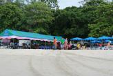 Искусственный риф для восстановления прибрежные экосистемы (Ката - Карон 20 декабря 2012)