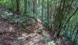 Водопад Кхун Си, секретная купель и вьюпоинт — дикий Самуи